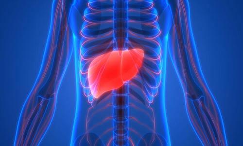 tumori fegato